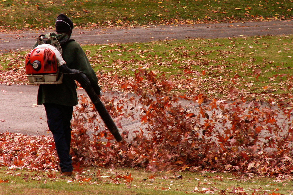 Leafblowers just blow litter down the road and harm soil microbes … it's a crime
